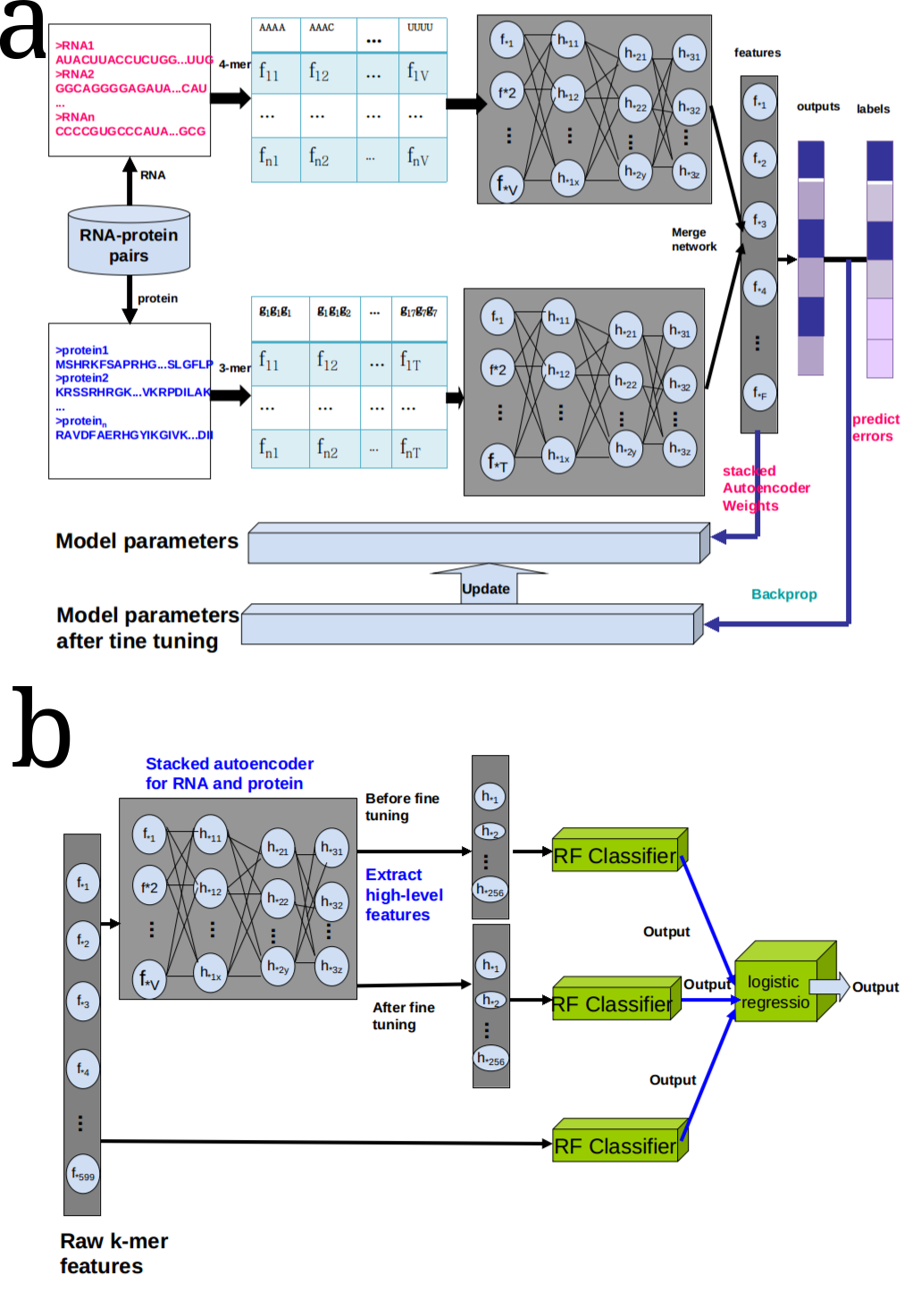 IPMiner: Hidden ncRNA-protein interaction sequential pattern mining