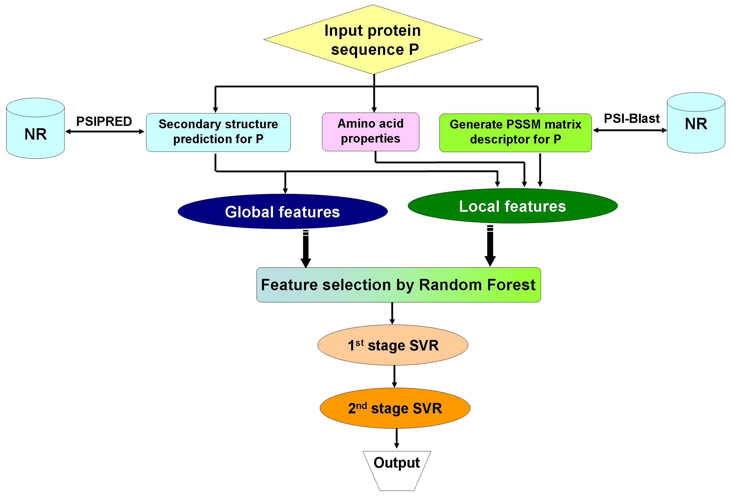 Predbf robust prediction of b factor profile from sequence using predbf robust prediction of b factor profile from sequence using two stage svr based on random forest feature selection nvjuhfo Choice Image